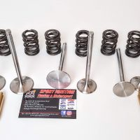 18-Kit Guides titanium double springs and Nimonic valves Fiat Uno Turbo Punto Gt